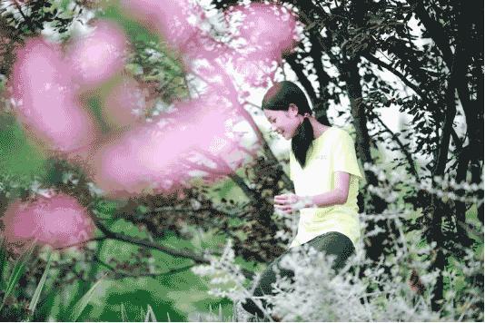 2019夏成都青青麓营地-女孩营832
