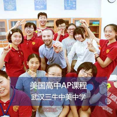 武汉三牛中美中学AP课程