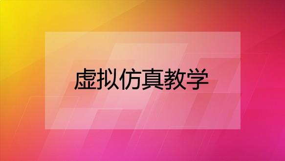 山东新视觉数码—虚拟仿真教学